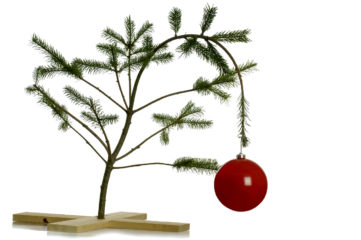 No Respite for Domestic Violence Victims at Christmas Time.